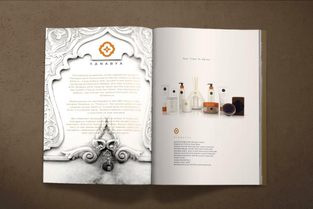 web_DAB_APSU_Brandbook_inside5